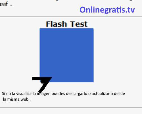 Test plugin Adobe Flash Player